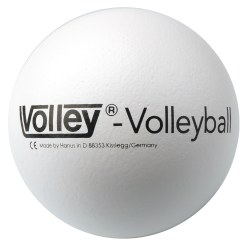 Volley Volleyboll