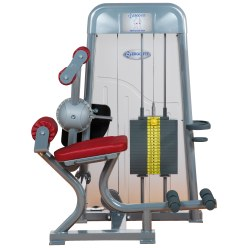Ergo-Fit Back Extension 4000