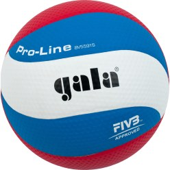 Gala Volleyboll