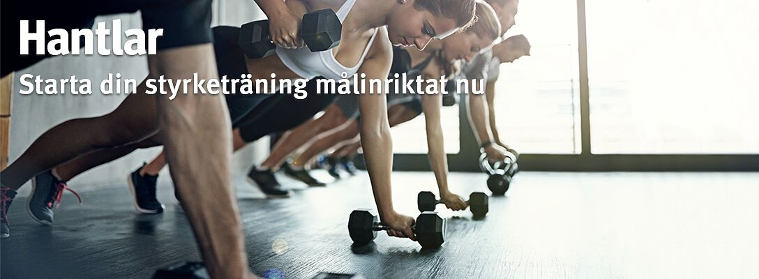 Hantlar Workout